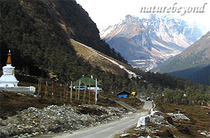 Lachung Travel Guide
